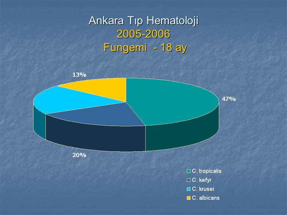 Ankara Tıp Hematoloji 2005-2006 Fungemi - 18 ay