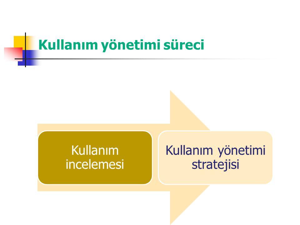 Kullanım yönetimi süreci Kullanım incelemesi Kullanım yönetimi stratejisi