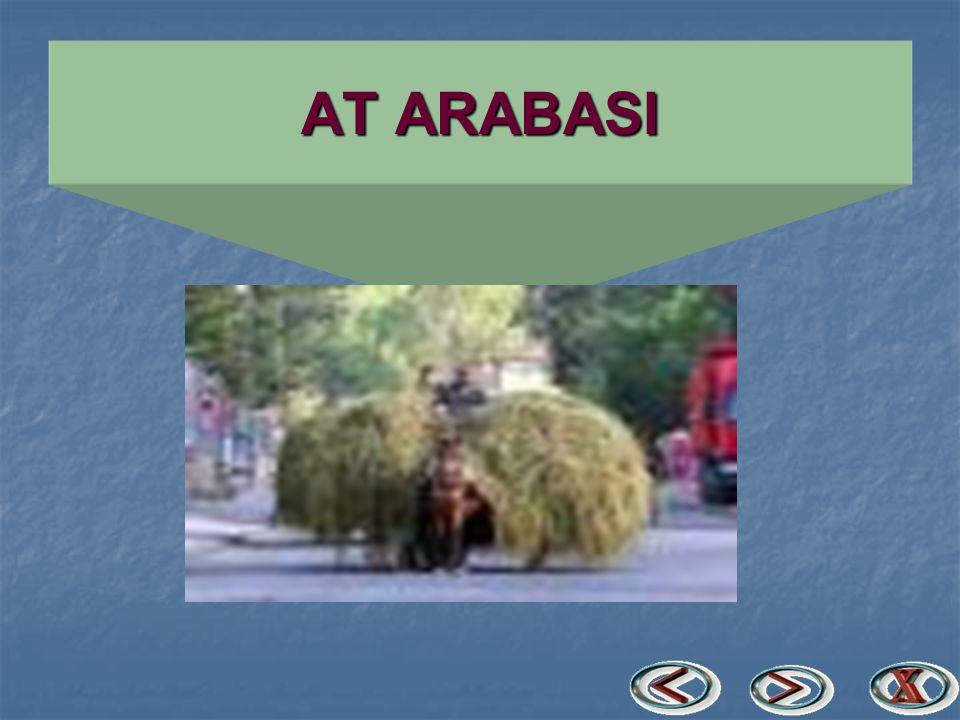 AT ARABASI