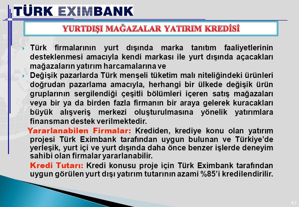 43  Türk firmalarının yurt dışında marka tanıtım faaliyetlerinin desteklenmesi amacıyla kendi markası ile yurt dışında açacakları mağazaların yatırım