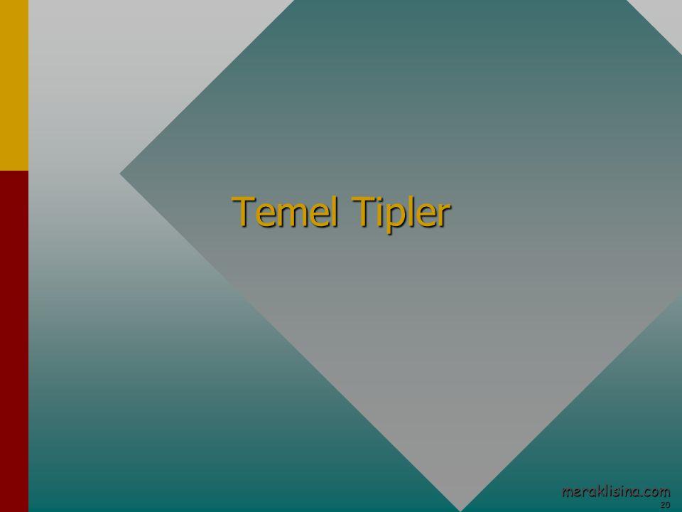 20 20 meraklisina.com Temel Tipler