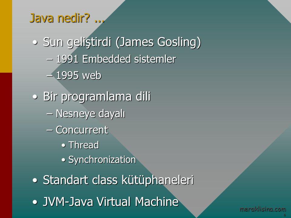 6 meraklisina.com Java nedir?...