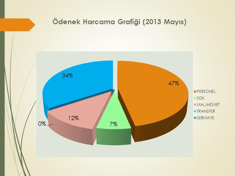 Ödenek Harcama Grafiği (2013 Mayıs)