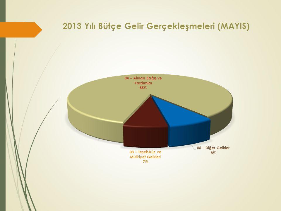 2013 Yılı Bütçe Gelir Gerçekleşmeleri (MAYIS)