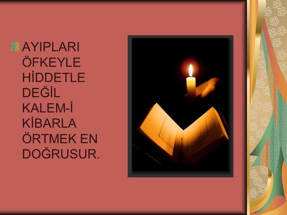AYIPLARI ÖFKEYLE HİDDETLE DEĞİL KALEM-İ KİBARLA ÖRTMEK EN DOĞRUSUR.