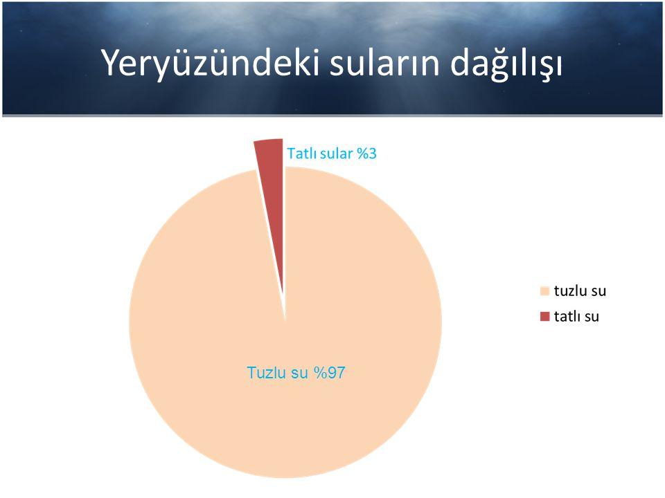Yeryüzündeki suların dağılışı Tuzlu su %97