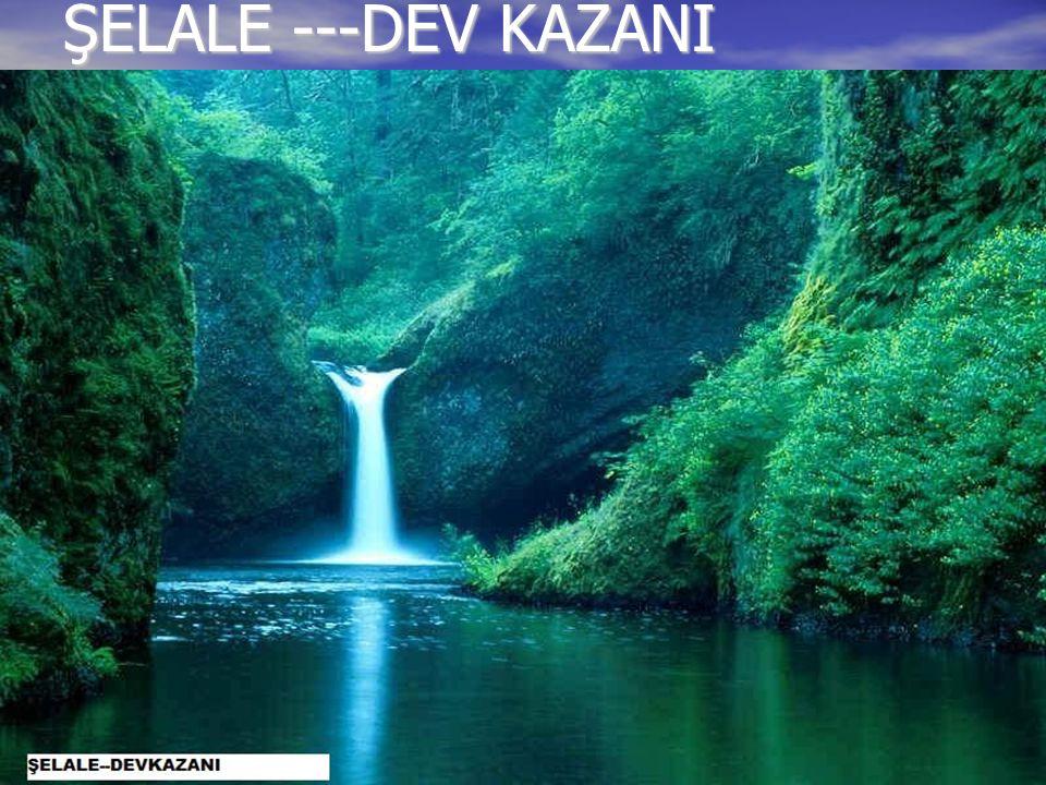 ŞELALE ---DEV KAZANI