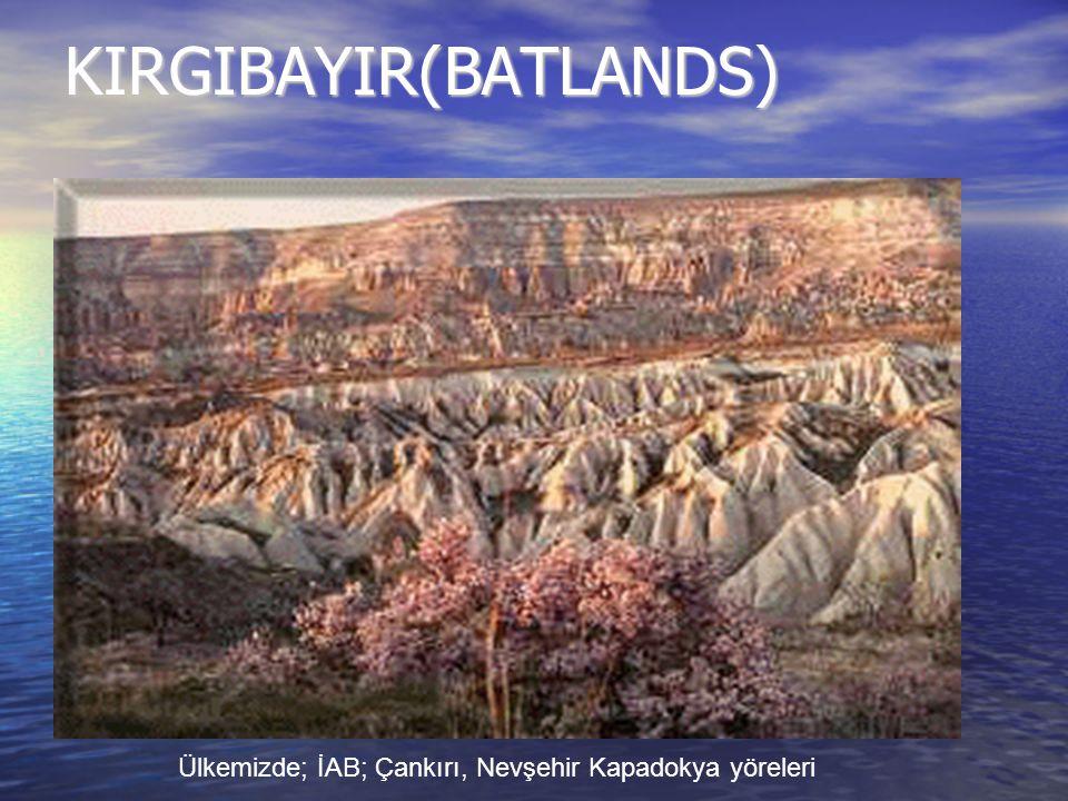 KIRGIBAYIR(BATLANDS) Ülkemizde; İAB; Çankırı, Nevşehir Kapadokya yöreleri