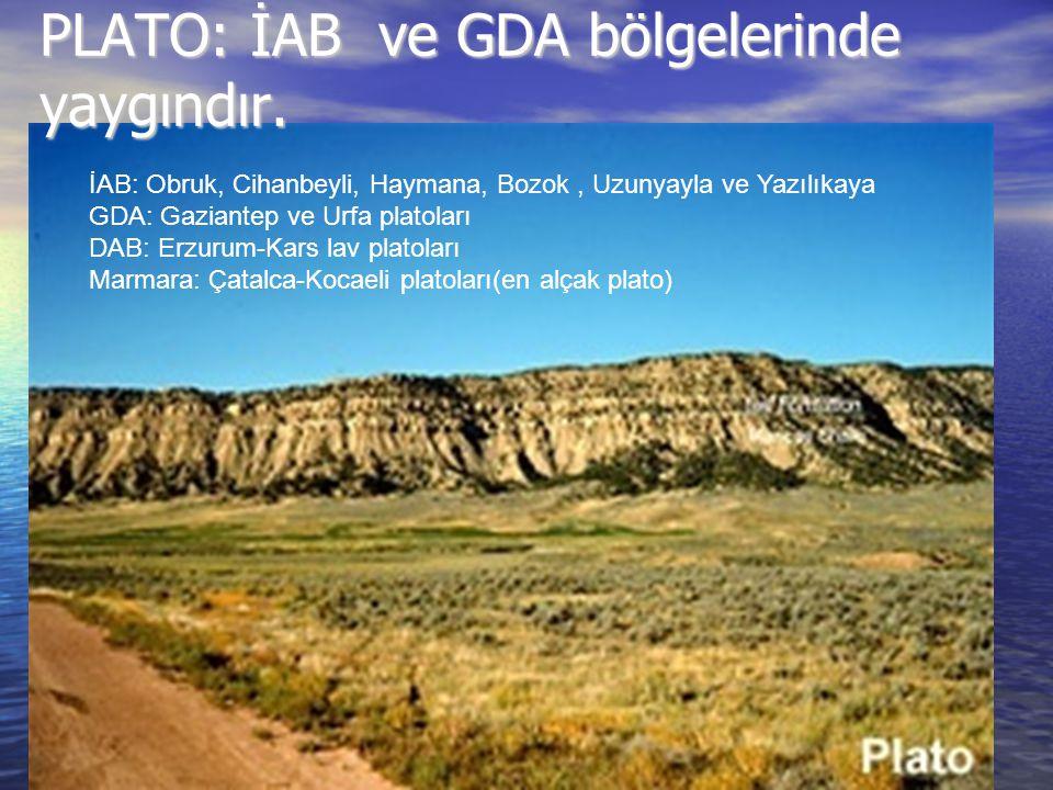 PLATO: İAB ve GDA bölgelerinde yaygındır. İAB: Obruk, Cihanbeyli, Haymana, Bozok, Uzunyayla ve Yazılıkaya GDA: Gaziantep ve Urfa platoları DAB: Erzuru