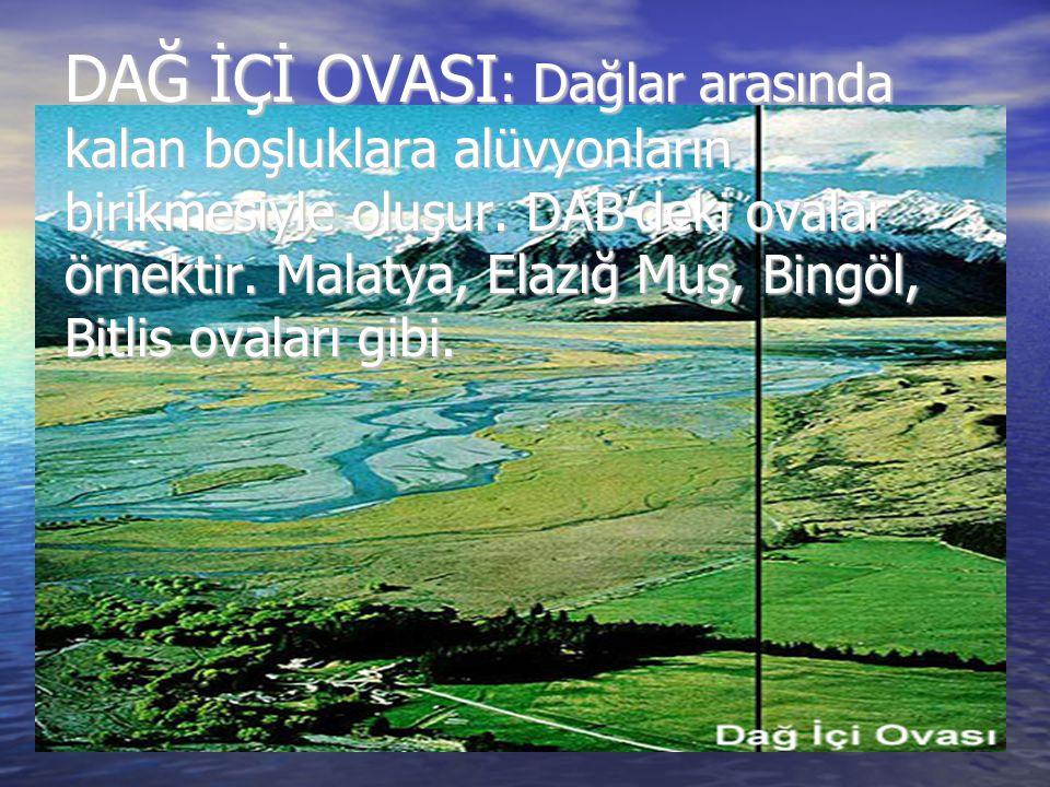 DAĞ İÇİ OVASI : Dağlar arasında kalan boşluklara alüvyonların birikmesiyle oluşur. DAB'deki ovalar örnektir. Malatya, Elazığ Muş, Bingöl, Bitlis ovala