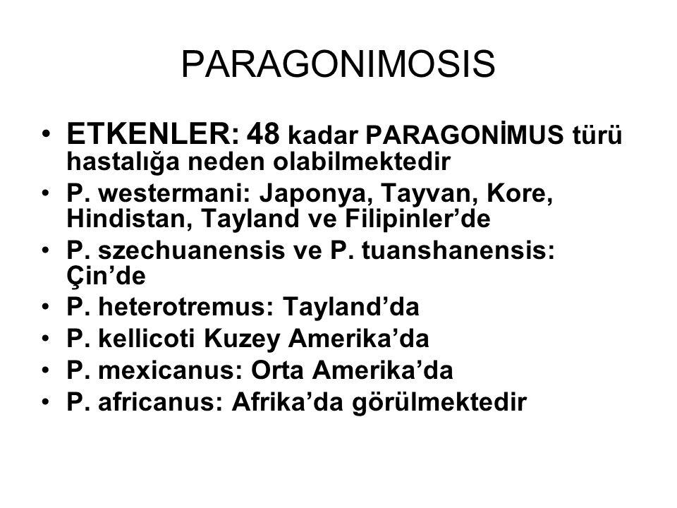 PARAGONIMOSIS ETKENLER: 48 kadar PARAGONİMUS türü hastalığa neden olabilmektedir P. westermani: Japonya, Tayvan, Kore, Hindistan, Tayland ve Filipinle