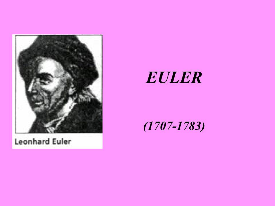 Euler kompleks sayılar ve onların logaritmaları konularında önemli çalışmalar yapmıştır.Euler diferansiyel hesabın ilkeleri kitabında bir kuvvet tarafından yapılan işin belirlenmesi, geometrik problemlerin çözümü gibi bir çok konuda kendi bulup geliştirdiği çok sayıda belirsiz integral alma yöntemi ve türev yöntemlerini kullandı.