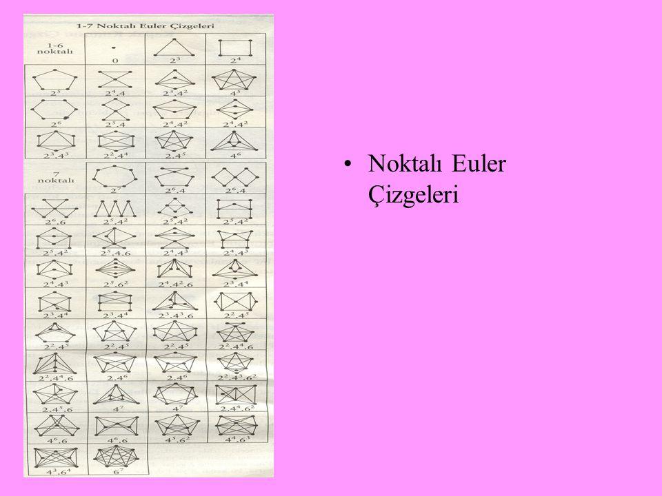 Euler ders verdiği özel birkaç öğrencisiyle Rusya'da matematik öğreniminin kurumlaşmasında önemli katkılar yapmıştır.Üç cisim problemi (hala çözülemem