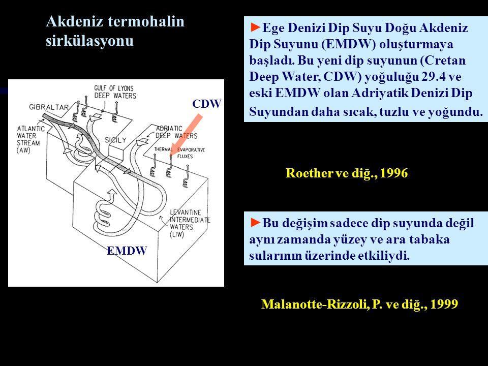 ►Bu oluşan yeni dip suyunun debisi 1989-1995 tarihleri arasında yapılan incelemelere göre 1 Sv civarındadır ve bu Adriatik Denizi'ndeki oluşan dip suyun debisinin üç katıdır.