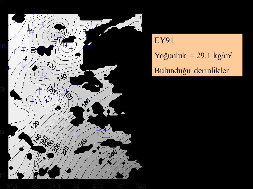 EG93 Yoğunluk = 29.1 kg/m 3 Bulunduğu derinlikler