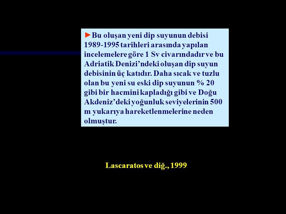 Malanotte-Rizzoli et al., 1997 Malanotte-Rizzoli, P.