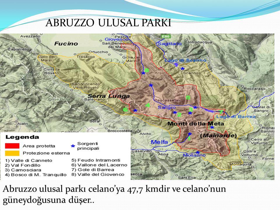 Abruzzo ulusal parkı celano'ya 47,7 kmdir ve celano'nun güneydoğusuna düşer.. ABRUZZO ULUSAL PARKI