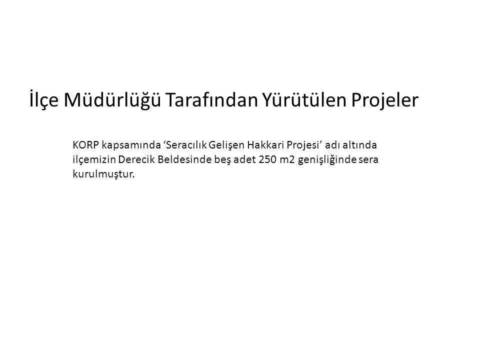 İlçe Müdürlüğü Tarafından Yürütülen Projeler KORP kapsamında 'Seracılık Gelişen Hakkari Projesi' adı altında ilçemizin Derecik Beldesinde beş adet 250