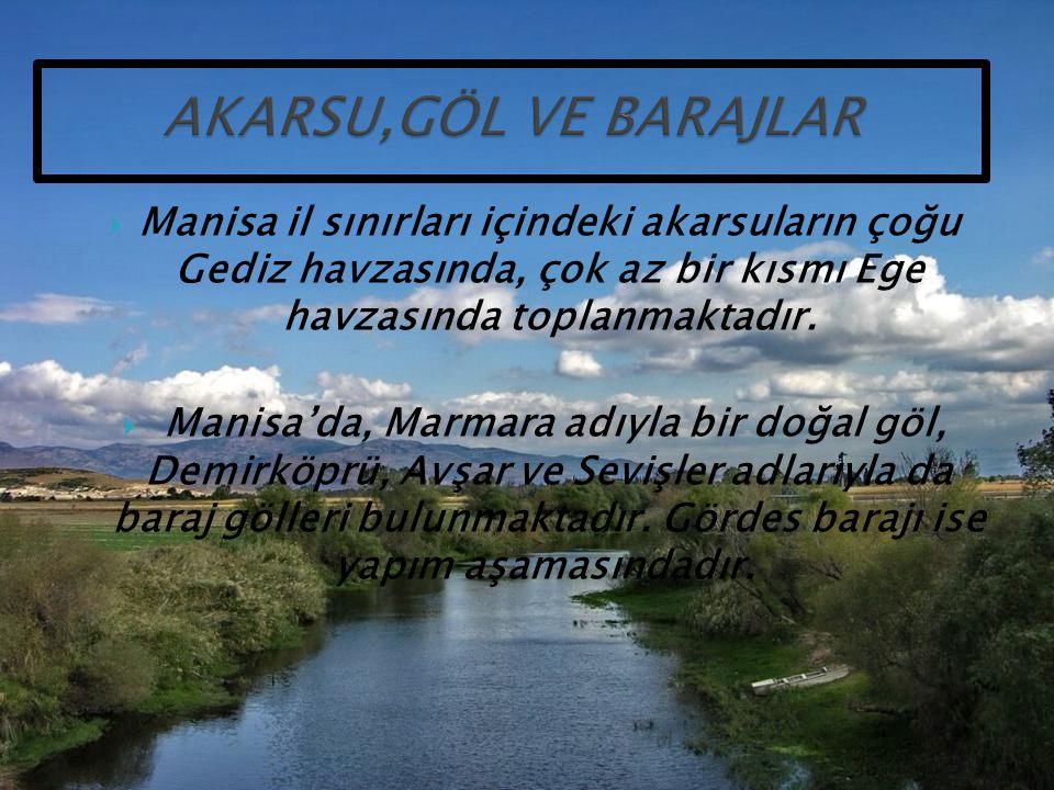  Manisa il sınırları içindeki akarsuların çoğu Gediz havzasında, çok az bir kısmı Ege havzasında toplanmaktadır.  Manisa'da, Marmara adıyla bir doğa