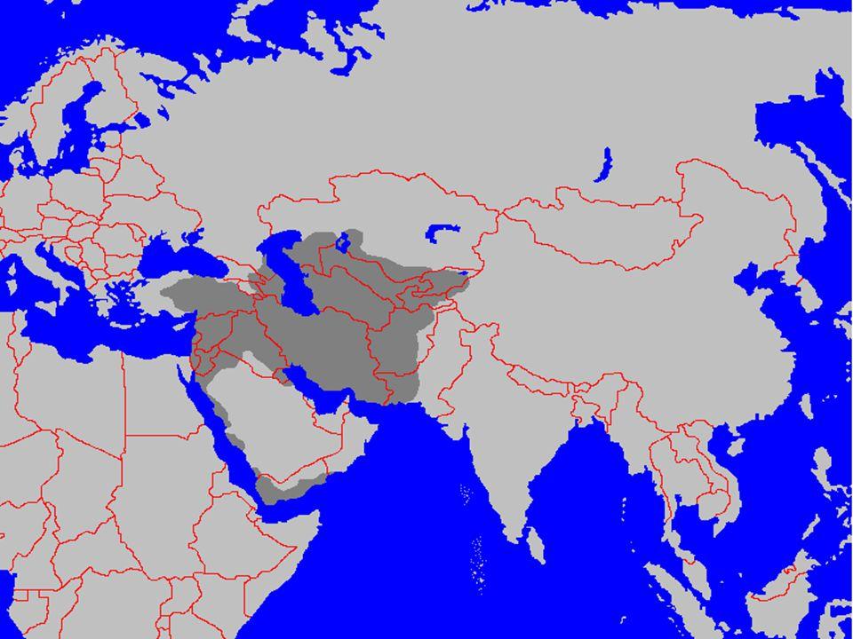 Selçuklular Öncesi İslam Dünyası 9.