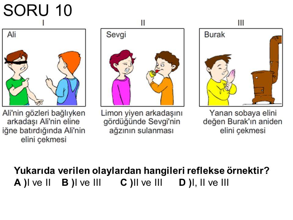 SORU 10 Yukarıda verilen olaylardan hangileri reflekse örnektir? A )I ve IIB )I ve IIIC )II ve IIID )I, II ve III