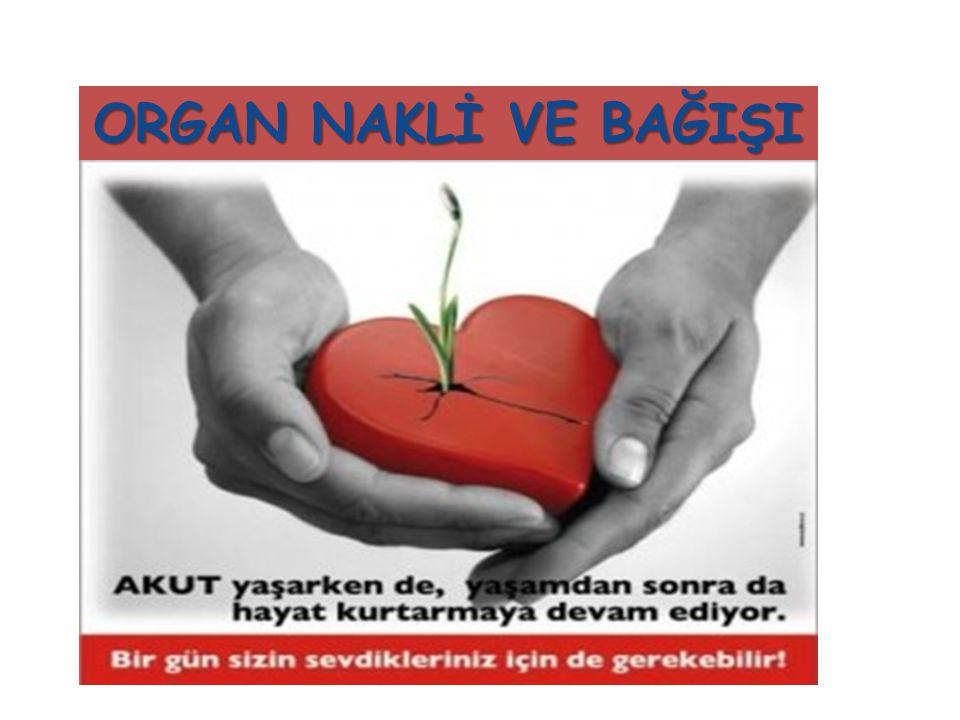 BEYİN ÖLÜMÜ GELİŞTİKTEN SONRA; Organ bağışı için ailelerden izin alıyoruz.