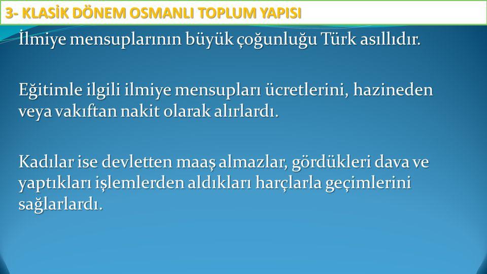 İlmiye mensuplarının büyük çoğunluğu Türk asıllıdır. Eğitimle ilgili ilmiye mensupları ücretlerini, hazineden veya vakıftan nakit olarak alırlardı. Ka