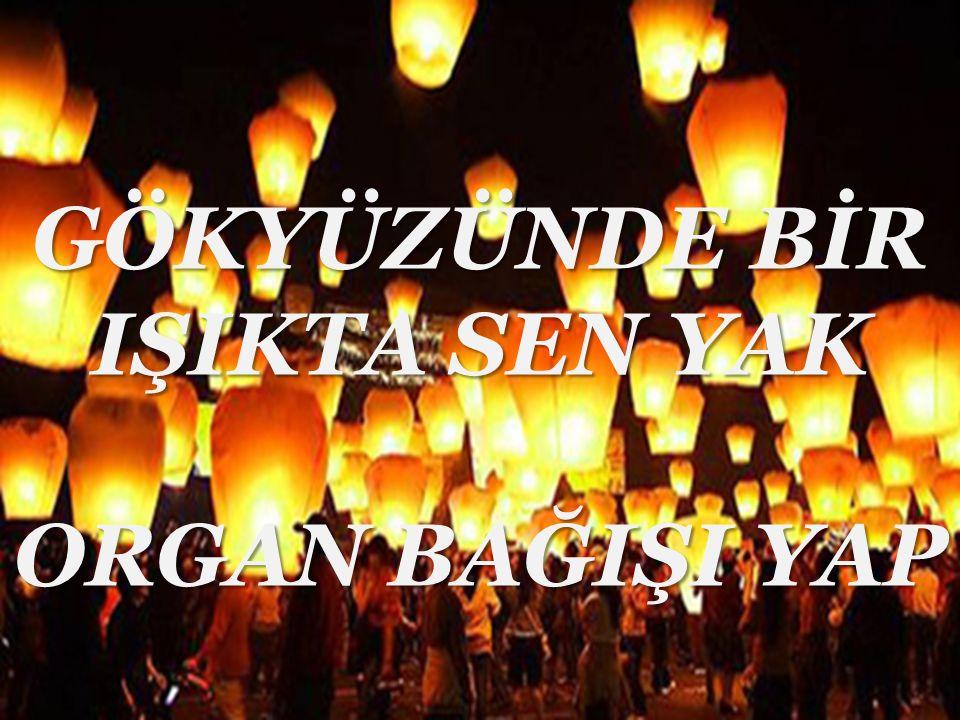 LÜTFEN YARDIM EDİN !!!