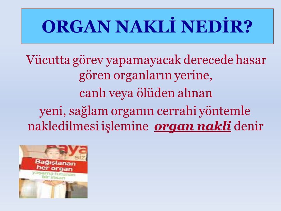 Kornea Ege Ü.T.F Akciğer Süreyyapaşa E.A.H.Sağ Böbrek Ulusal Sıradan Akdeniz Ü.T.F..