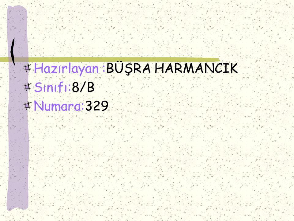 Hazırlayan :BÜŞRA HARMANCIK Sınıfı:8/B Numara:329