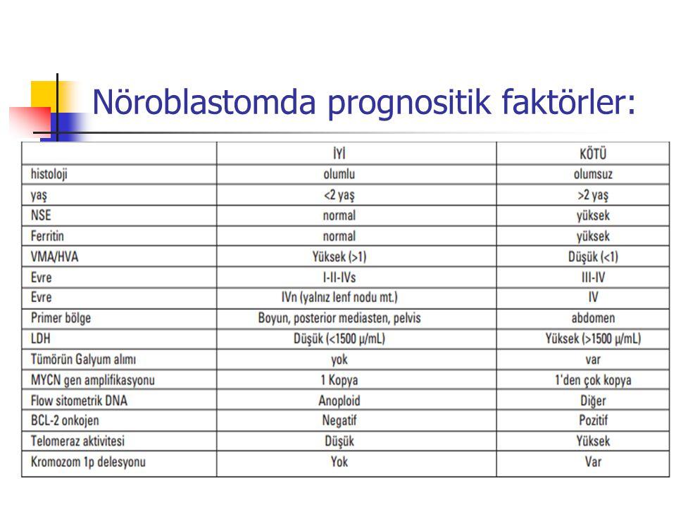 Nöroblastomda prognositik faktörler: