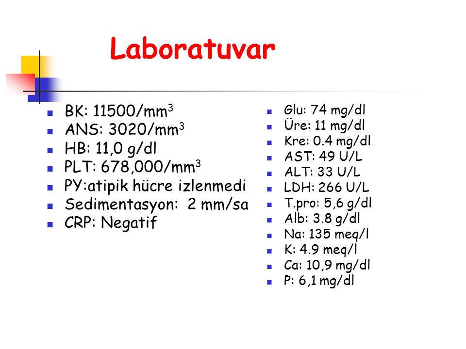 Laboratuvar BK: 11500/mm 3 ANS: 3020/mm 3 HB: 11,0 g/dl PLT: 678,000/mm 3 PY:atipik hücre izlenmedi Sedimentasyon: 2 mm/sa CRP: Negatif Glu: 74 mg/dl