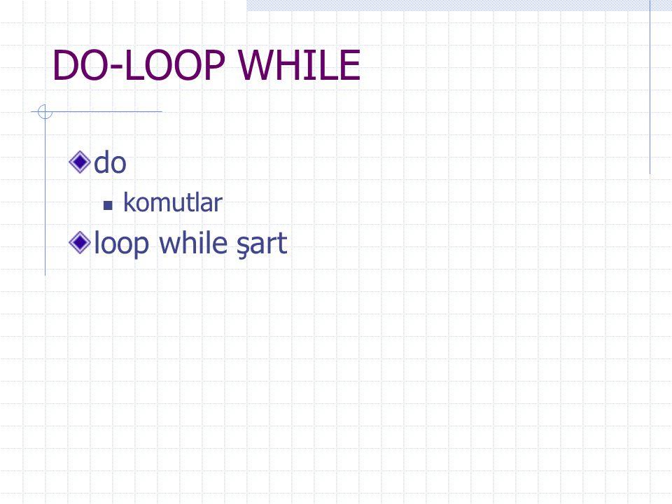 DO-LOOP WHILE do komutlar loop while şart