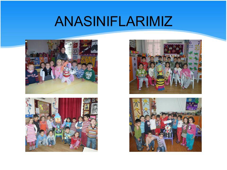 ANASINIFLARIMIZ