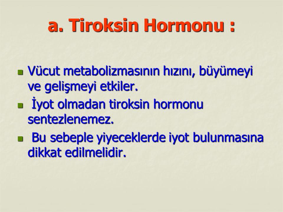 a. Tiroksin Hormonu : Vücut metabolizmasının hızını, büyümeyi ve gelişmeyi etkiler. Vücut metabolizmasının hızını, büyümeyi ve gelişmeyi etkiler. İyot