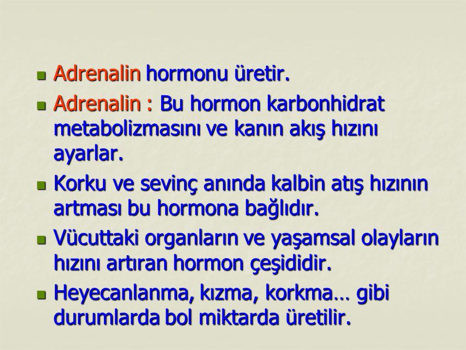 Adrenalin hormonu üretir. Adrenalin hormonu üretir. Adrenalin : Bu hormon karbonhidrat metabolizmasını ve kanın akış hızını ayarlar. Adrenalin : Bu ho