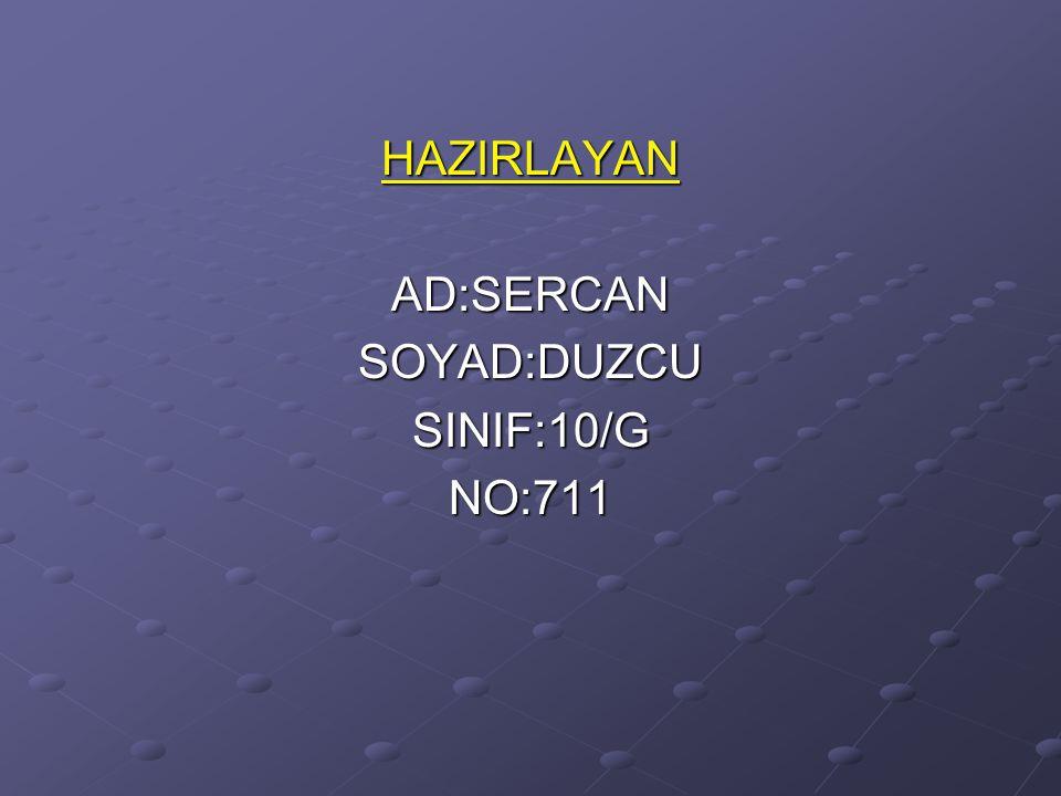 HAZIRLAYANAD:SERCANSOYAD:DUZCUSINIF:10/GNO:711