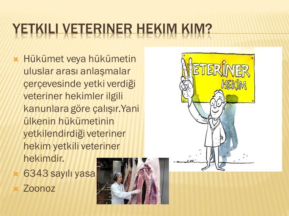  Hükümet veya hükümetin uluslar arası anlaşmalar çerçevesinde yetki verdiği veteriner hekimler ilgili kanunlara göre çalışır.Yani ülkenin hükümetinin