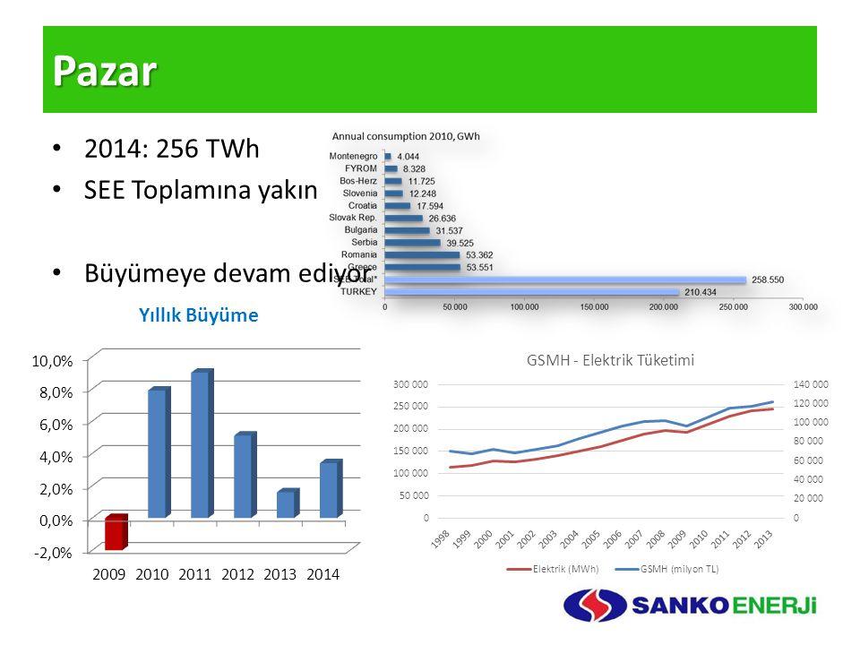 Pazar 2014: 256 TWh SEE Toplamına yakın Büyümeye devam ediyor