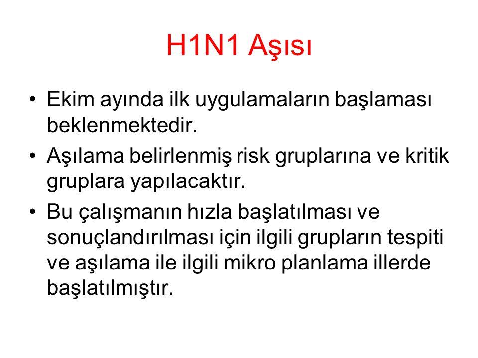 H1N1 Aşısı Ekim ayında ilk uygulamaların başlaması beklenmektedir.