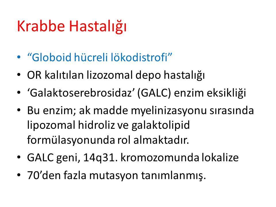 Krabbe Hastalığı Globoid hücreli lökodistrofi OR kalıtılan lizozomal depo hastalığı 'Galaktoserebrosidaz' (GALC) enzim eksikliği Bu enzim; ak madde myelinizasyonu sırasında lipozomal hidroliz ve galaktolipid formülasyonunda rol almaktadır.