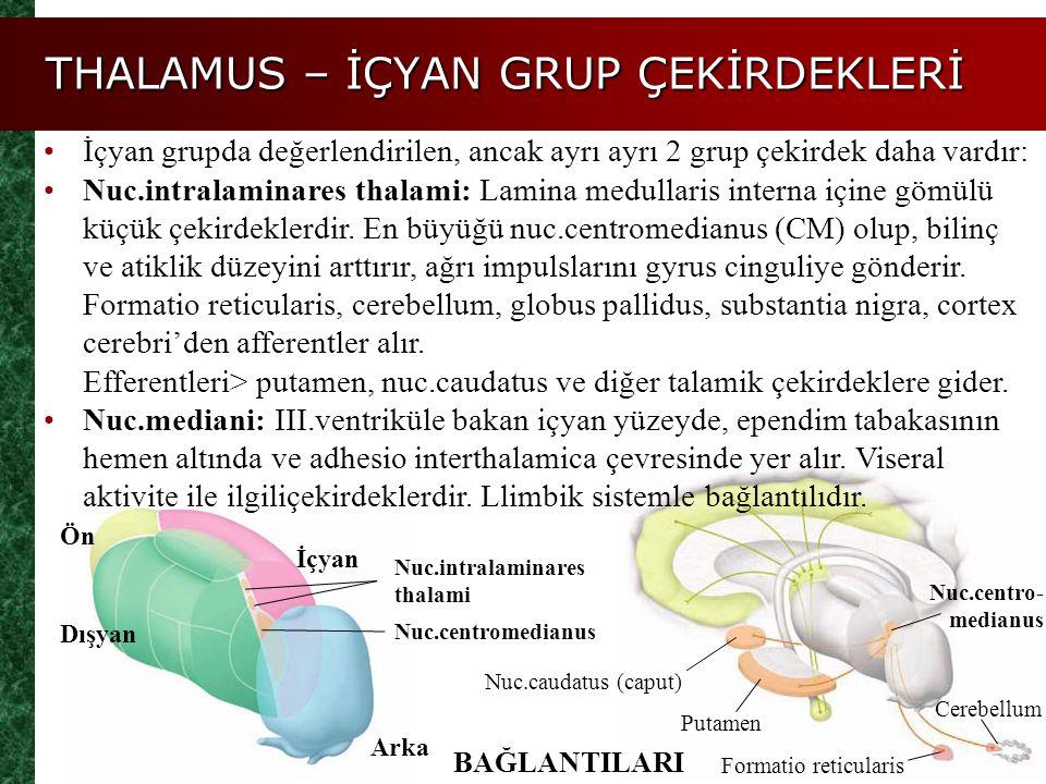 THALAMUS – İÇYAN GRUP ÇEKİRDEKLERİ Ön İçyan Dışyan Arka Nuc.intralaminares thalami Nuc.centromedianus BAĞLANTILARI İçyan grupda değerlendirilen, ancak