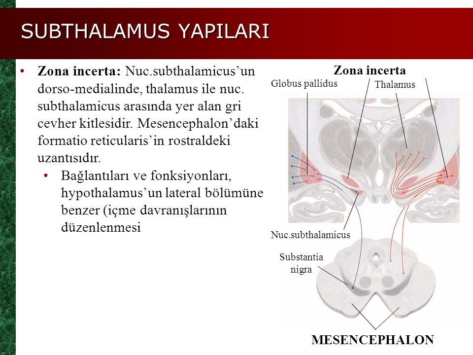 SUBTHALAMUS YAPILARI Zona incerta: Nuc.subthalamicus'un dorso-medialinde, thalamus ile nuc. subthalamicus arasında yer alan gri cevher kitlesidir. Mes