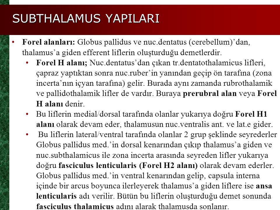 SUBTHALAMUS YAPILARI Forel alanları: Globus pallidus ve nuc.dentatus (cerebellum)'dan, thalamus'a giden efferent liflerin oluşturduğu demetlerdir. For