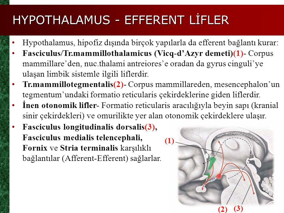 HYPOTHALAMUS - EFFERENT LİFLER Hypothalamus, hipofiz dışında birçok yapılarla da efferent bağlantı kurar: Fasciculus/Tr.mammillothalamicus (Vicq-d'Azy