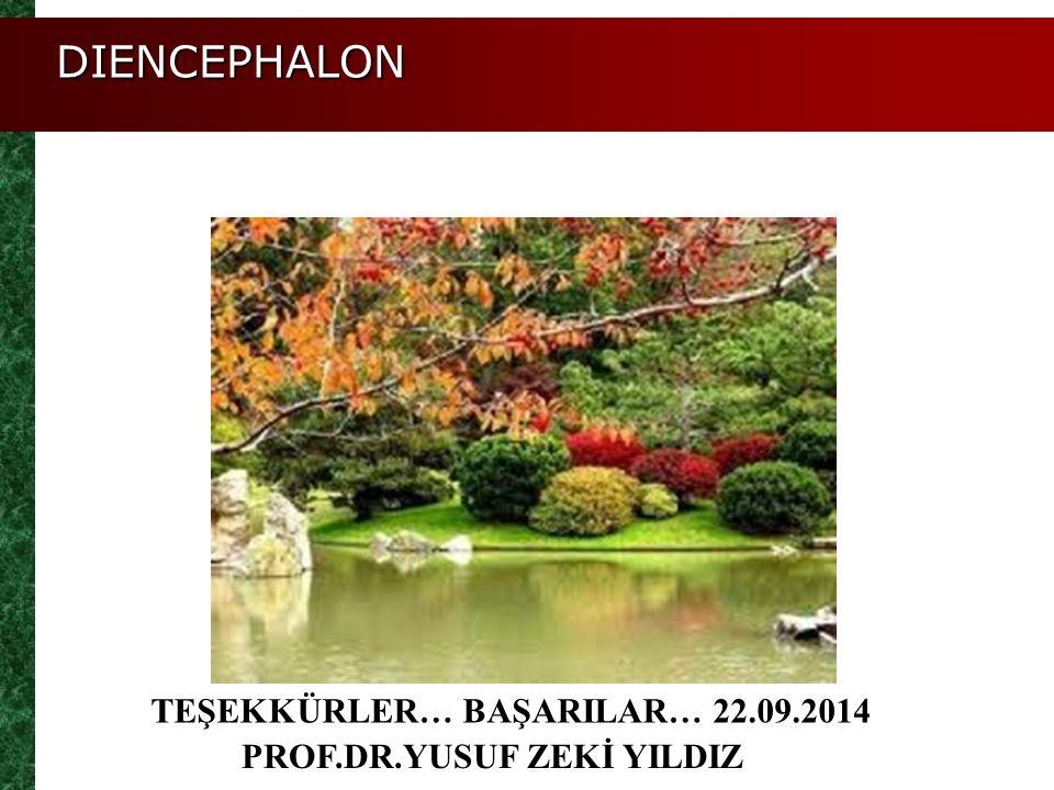TEŞEKKÜRLER… BAŞARILAR… 22.09.2014 PROF.DR.YUSUF ZEKİ YILDIZ DIENCEPHALON