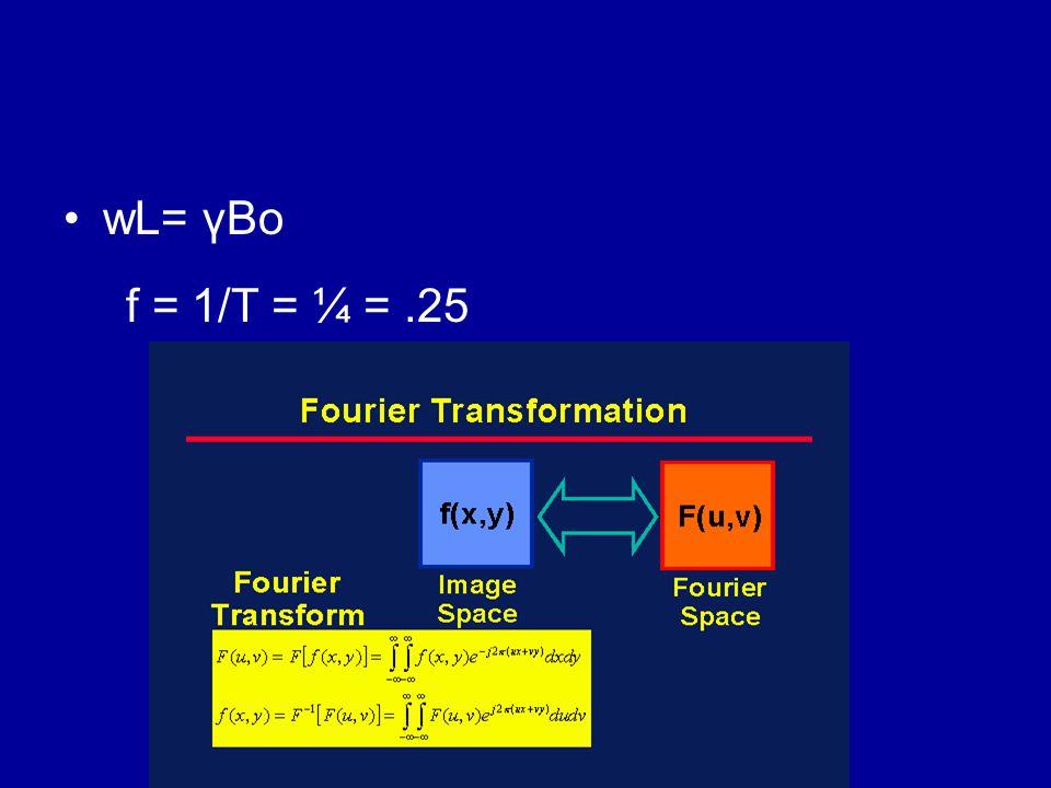 wL= γBo f = 1/T = ¼ =.25