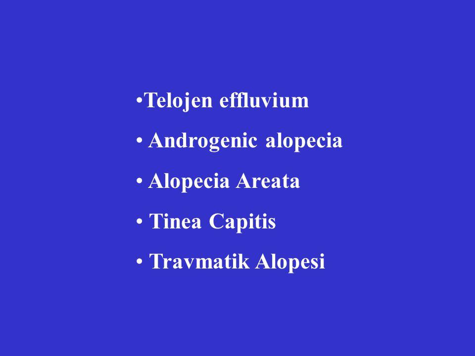 Telojen effluvium Androgenic alopecia Alopecia Areata Tinea Capitis Travmatik Alopesi
