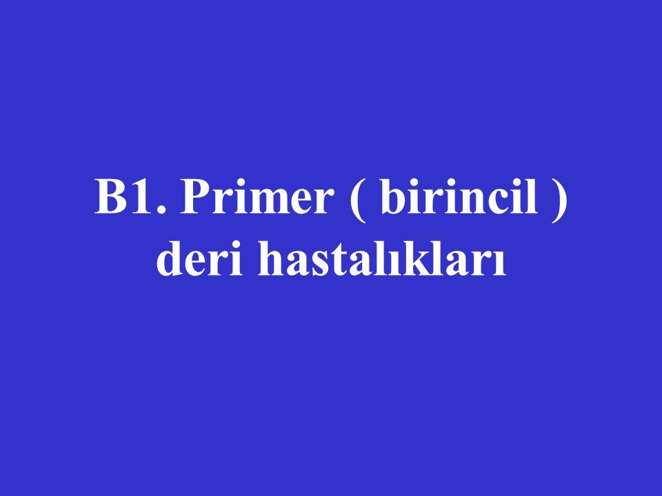 B1. Primer ( birincil ) deri hastalıkları