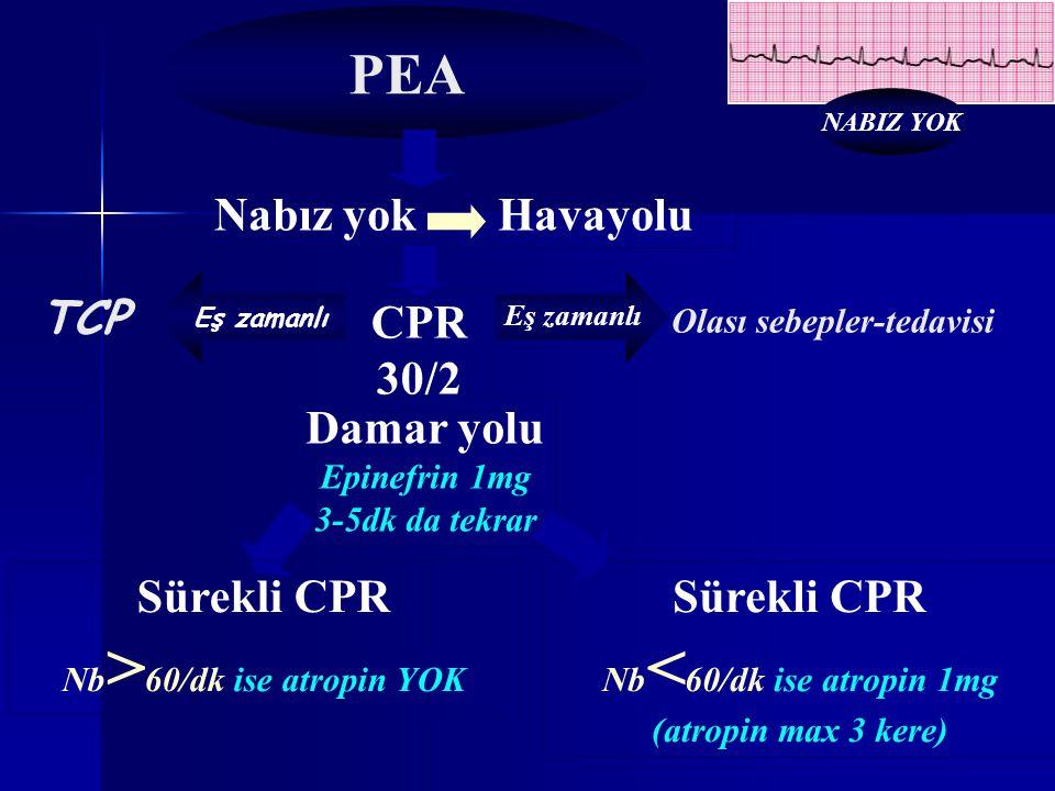 Nabız yok Havayolu Damar yolu Epinefrin 1mg 3-5dk da tekrar Sürekli CPR Nb < 60/dk ise atropin 1mg (atropin max 3 kere) Eş zamanlı Olası sebepler-teda